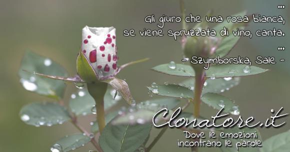 … Gli giuro che una rosa bianca, se viene spruzzata di vino, canta. …  - Wisława Szymborska